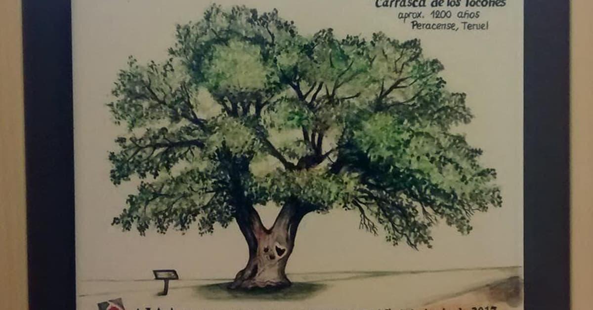 arbol empresa centenaria