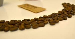 Tipos de cafés más populares