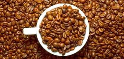 comprar buen café tueste natural