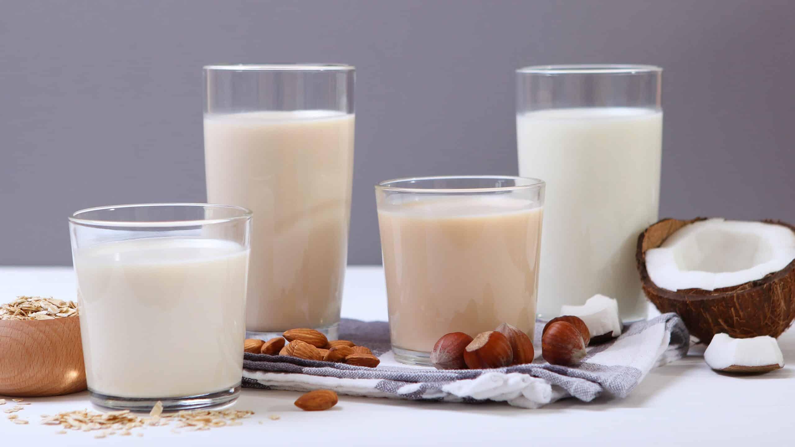 tipos de leche para café
